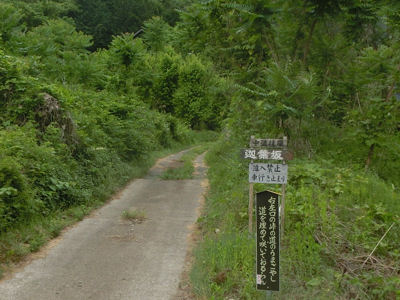 中道往還~煮貝の道~第2回 _f0019247_1148141.jpg