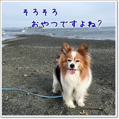 d0013149_01065360.jpg