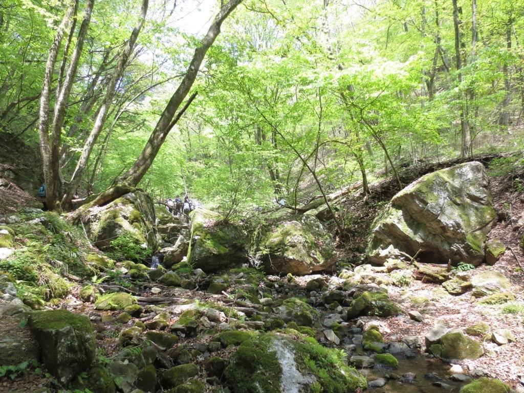 御岳山ハイキング_c0310571_22550438.jpg