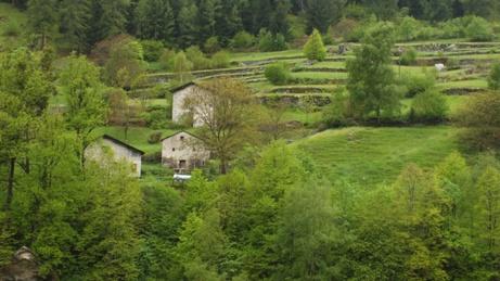 スイスの旅 1_b0214473_21532894.jpg