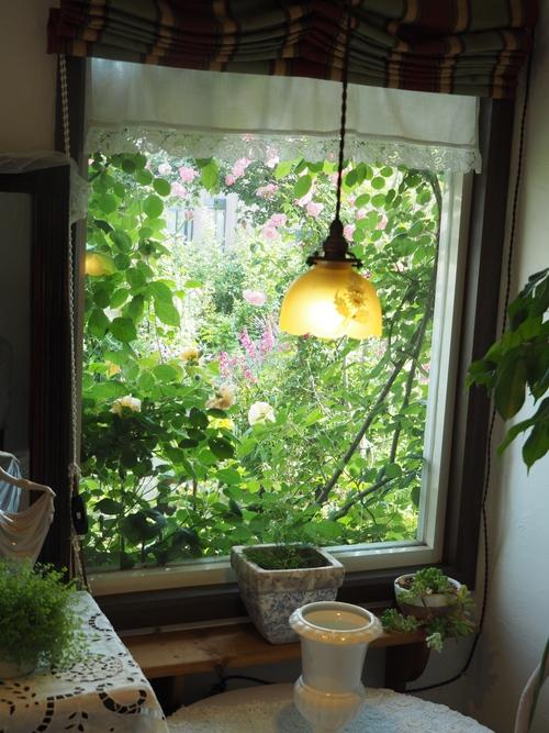 2016 茨城のお庭その3 _c0167112_18462480.jpg