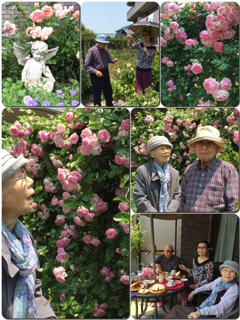 家族と薔薇時間_d0085018_1964497.jpg