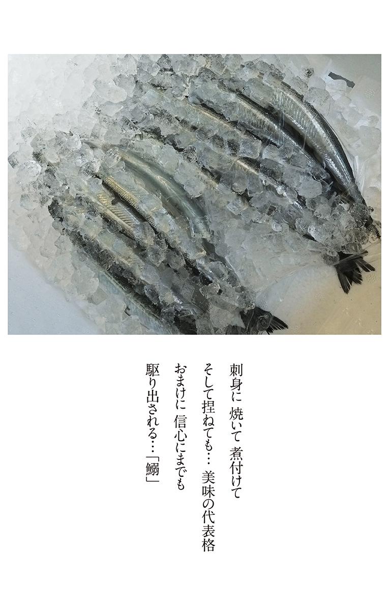海の畑から漁れ立て_b0355531_07535074.jpg