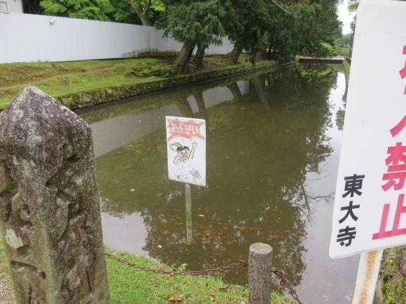 これから奈良に来るあなた。_c0001670_20235918.jpg