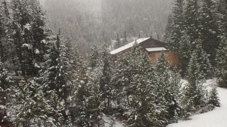 スイスの旅 3_b0214473_1216517.jpg