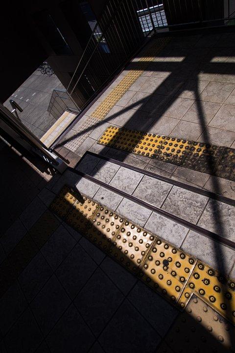 マグレブ鉄道沿線の光蜥蜴_d0353489_19253390.jpg