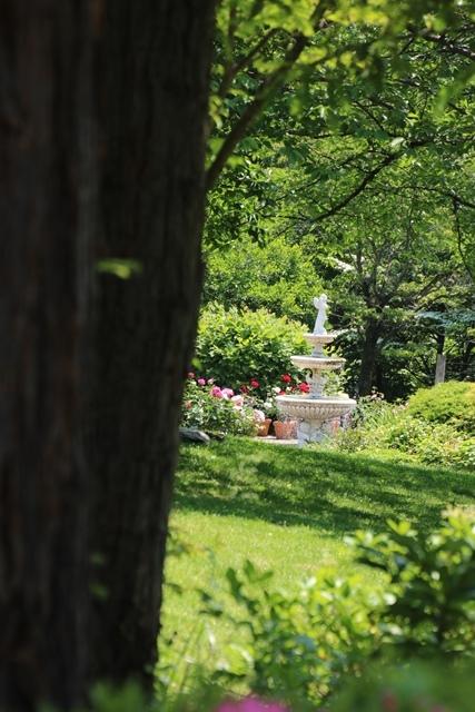 オバマ大統領の広島訪問の意義、英断に感動・・・北山緑化植物園の美しいバラ_d0181492_21101434.jpg