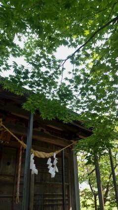 村社月山神社へ参拝_f0168392_20283838.jpg
