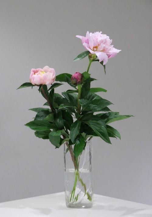 """sevres \""""bambous\""""vase_c0108595_235415100.jpg"""