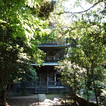 龍口寺にいきました。_c0195909_1110397.jpg