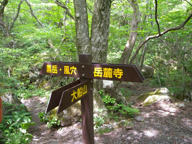 平治岳&北大船山&大船山! ミヤマキリシマは一分咲き!_e0272335_12164198.jpg
