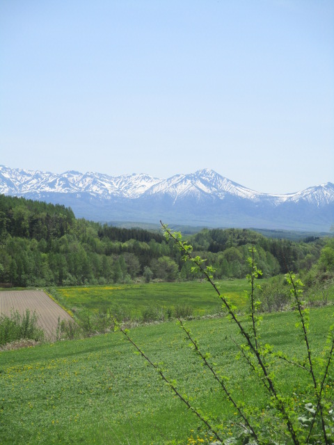 六花山荘へランチに出かけた_a0279743_6484496.jpg