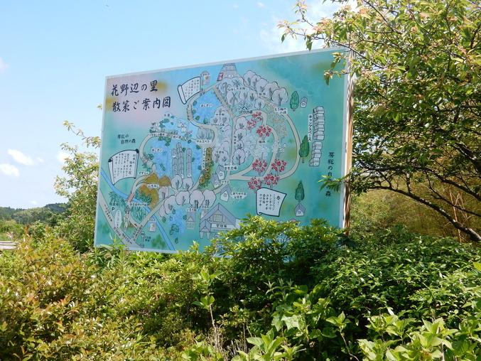 '16,5,23(月)花野辺の里に行って来たYO!_f0060461_8165233.jpg