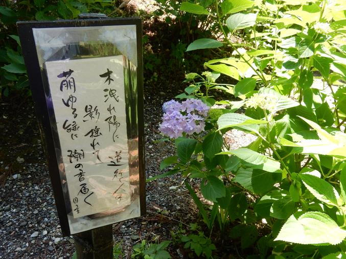 '16,5,23(月)花野辺の里に行って来たYO!_f0060461_8392334.jpg