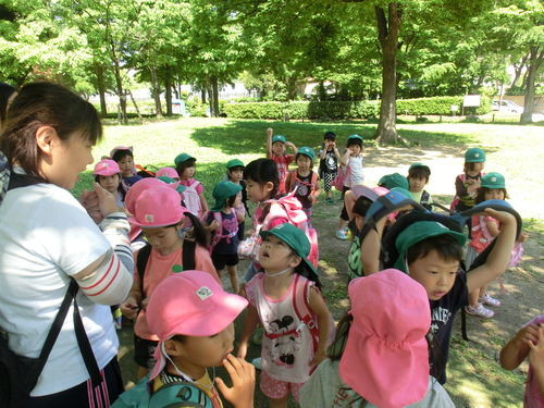 4・5歳児 遠足へ_c0151262_1535181.jpg
