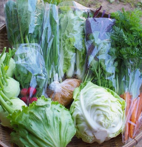 今週の野菜セット(5/24~5/28着)_c0110869_1395651.jpg