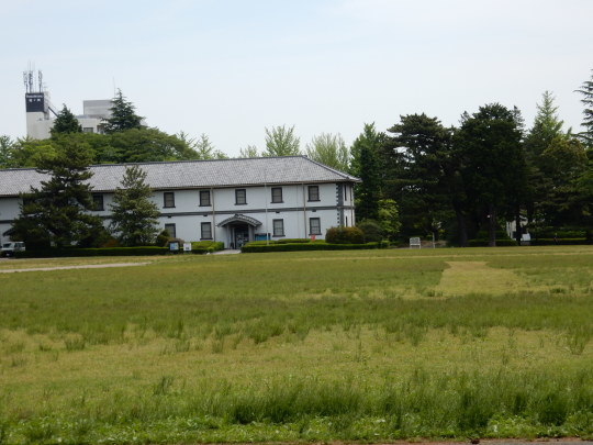 初夏の「のんコレ」と公園散歩_e0355177_12311097.jpg