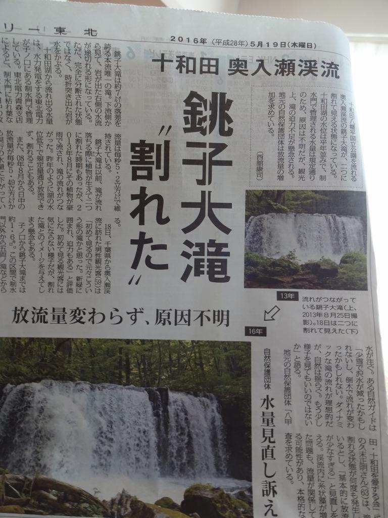 帰青今年2回目 【5/18】 快晴の十和田湖と奥入瀬渓流_d0061678_16555655.jpg