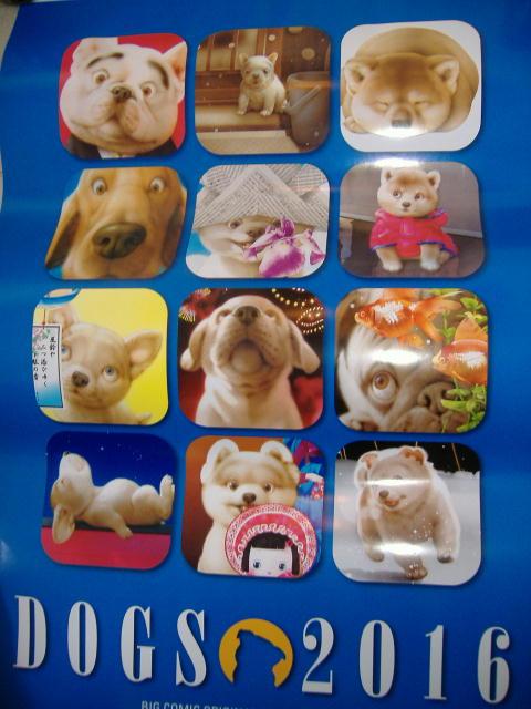 【犬さんカレンダー&猫さんカレンダー あと7枚・・・!?】_c0328479_21184321.jpg