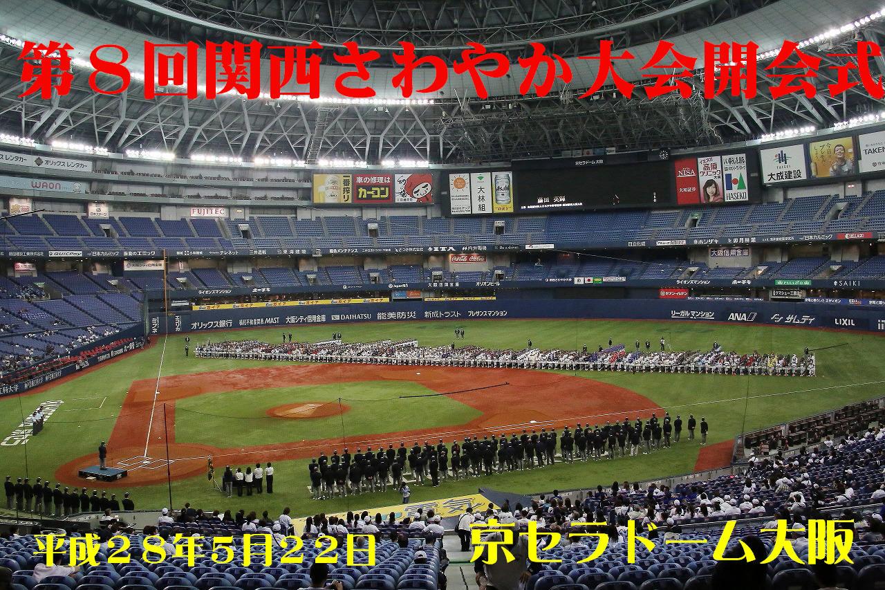 第8回関西さわやか大会開会式_a0170082_1945384.jpg