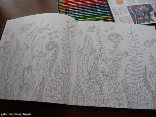ジョハンナ・バスフォードの塗り絵ブック「海の楽園」_d0285885_1632138.jpg