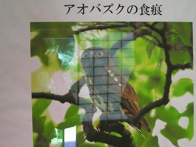 f0181394_07575112.jpg