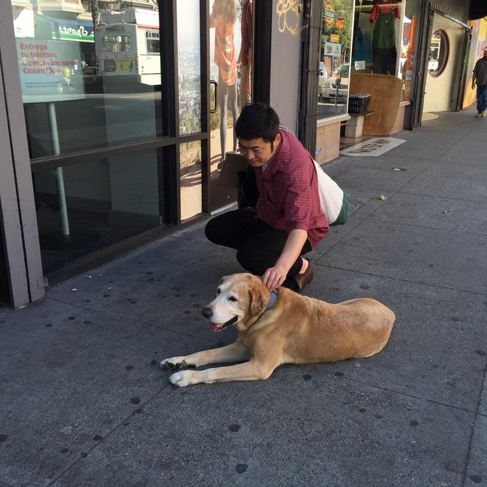 犬とYシャツと_f0170995_2192635.jpg