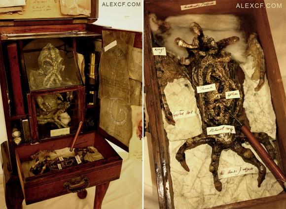 謎のトーマス・マーリン博物館:実は興味深いのはそのマーリンそのものだった!_a0348309_8362719.jpg