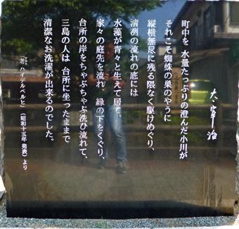 三島の湧水_c0195909_145278.jpg