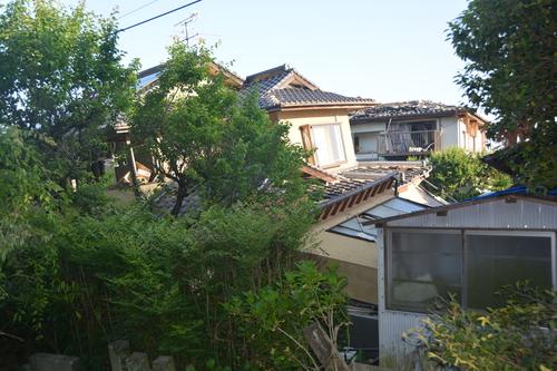 地震から一ヶ月過ぎても_c0085539_5513950.jpg