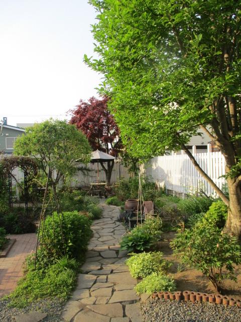 お庭の様子とデザート作り_a0279743_648244.jpg