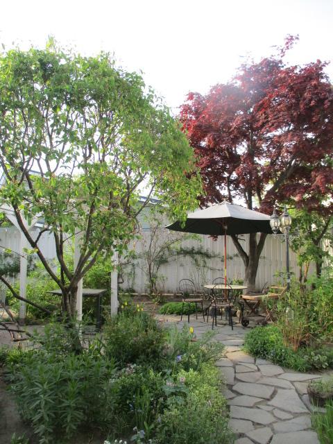 お庭の様子とデザート作り_a0279743_6532188.jpg
