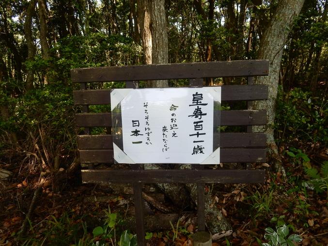 '16,5,24(火)続・花野辺の里散策!_f0060461_11222784.jpg