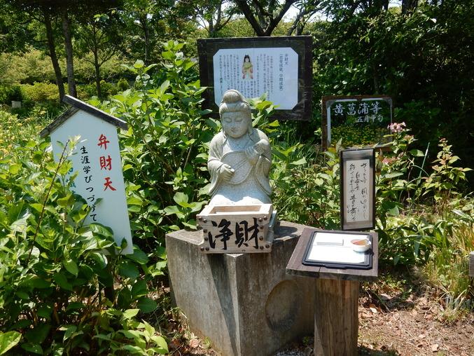 '16,5,24(火)続・花野辺の里散策!_f0060461_11323975.jpg