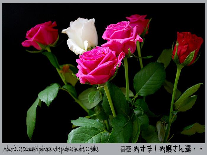 c0009981_15275752.jpg