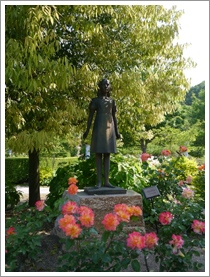 花フェスタ記念公園2016③_b0142989_18405752.jpg