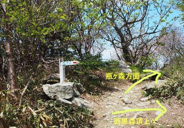 b0149340_20124362.jpg