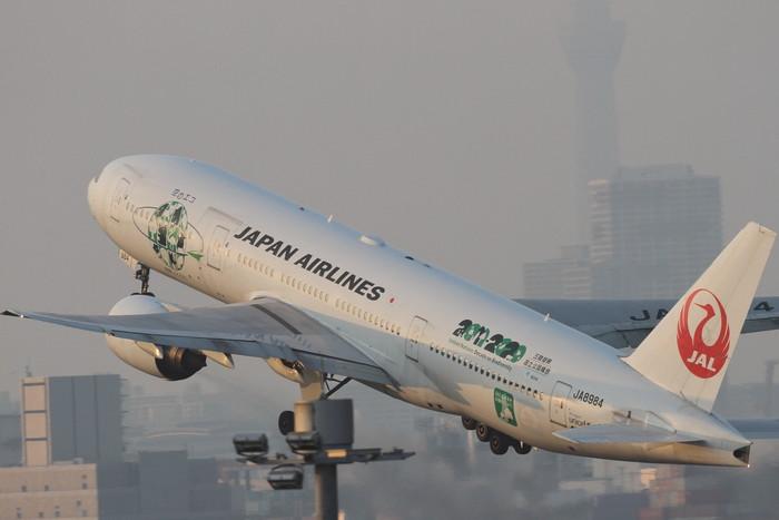 5月22日 羽田空港_c0247982_6423010.jpg
