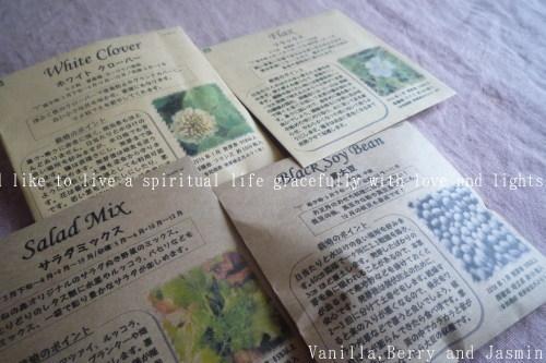 庭仕事の愉しみ_c0332287_15552888.jpg