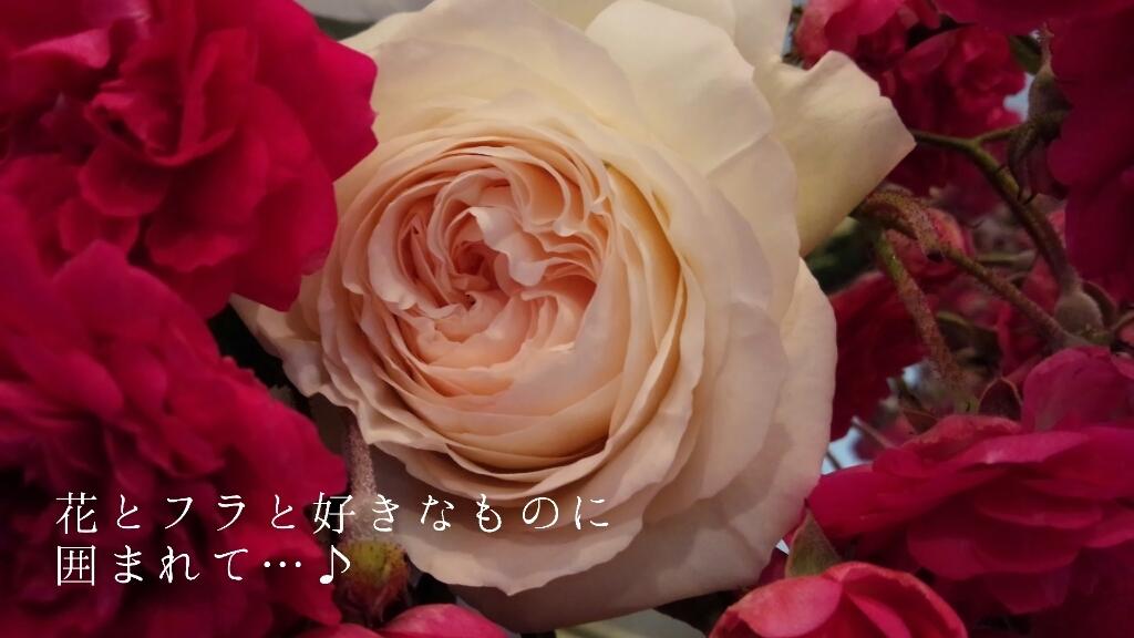 b0345108_04593248.jpg