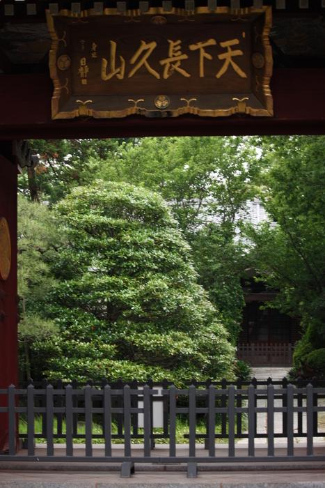 """""""葵の寺紋""""のある寺院。。_a0214329_1453629.jpg"""