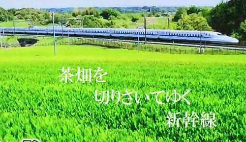 d0164636_812439.jpg