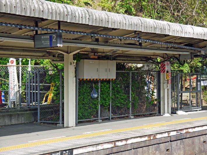 円覚寺結界「緑の洞門」の原形は残されていた!5・27 _c0014967_17575290.jpg