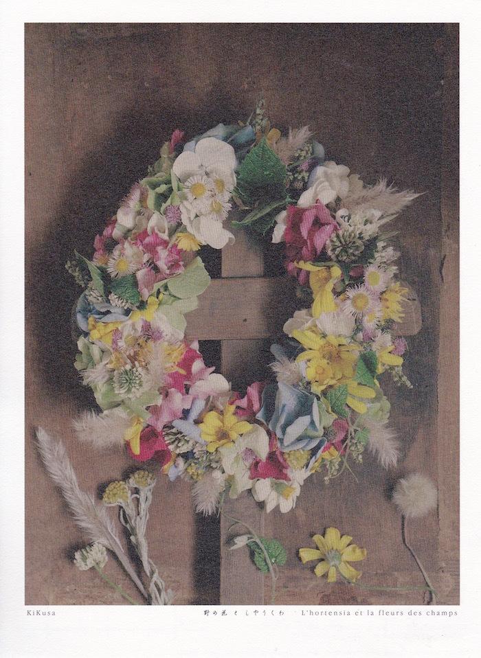 野の花としやうくわ_d0335577_09085983.jpg