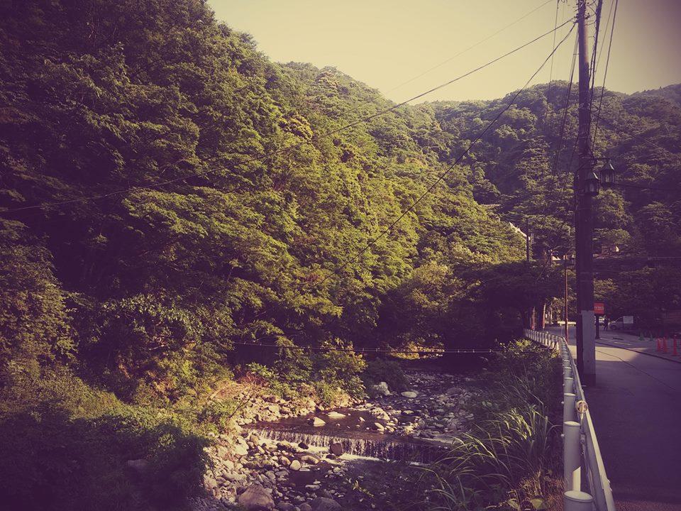 美しき箱根パート2_b0210688_21294386.jpg