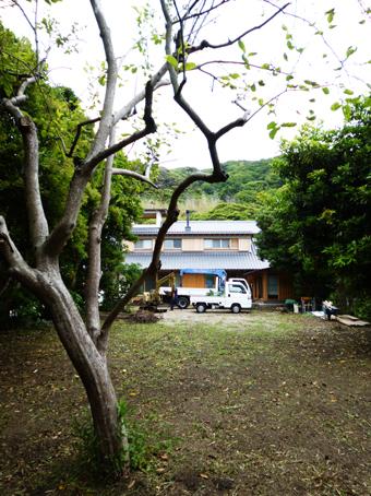 山泰荘の造園工事・・・その1_c0195909_16242481.jpg