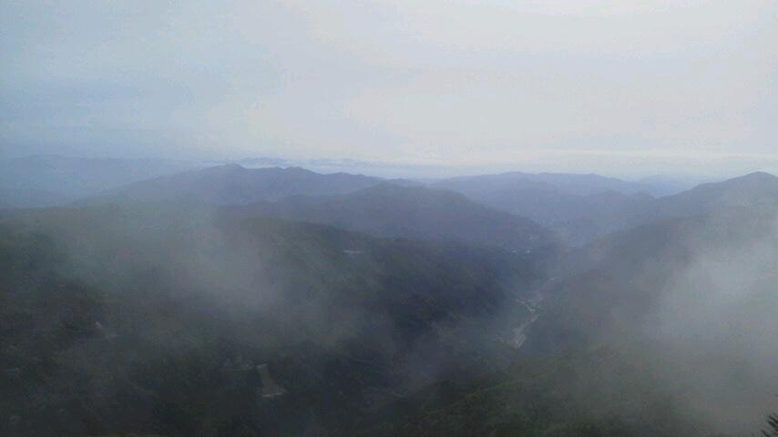 刀掛のミツバツツジは散りはじめました。今朝の気温は11℃。頂上はまだ雲の中です。_c0089831_9123011.jpg