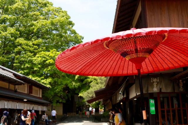 あぶり餅食べ比べ♪ 京都旅行 - 4_f0348831_21133770.jpg