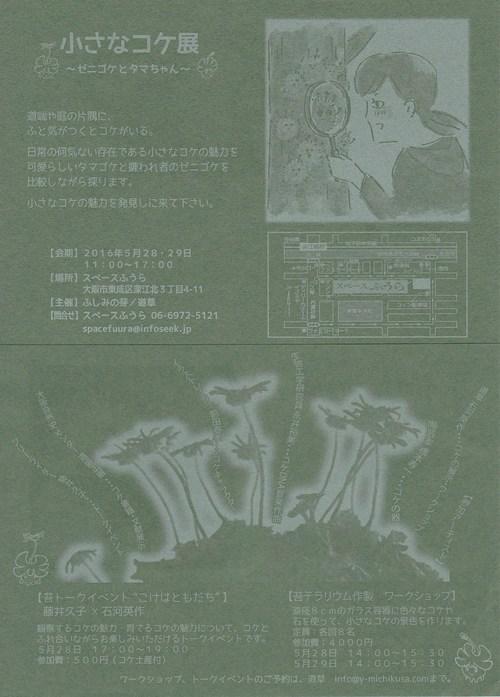 小さなコケ展 ゼニゴケとタマちゃん_c0103137_10314623.jpg