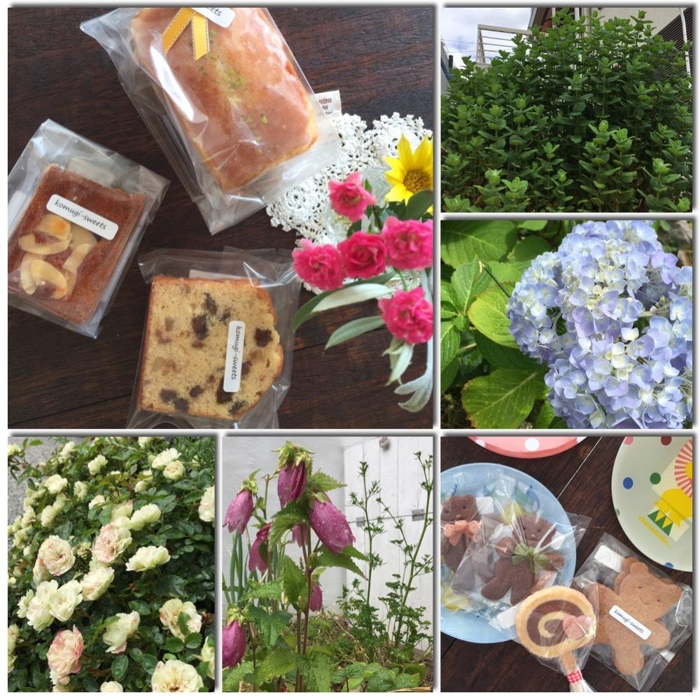 komugi*sweets *_c0131839_09415922.jpeg